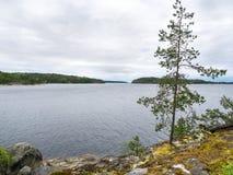 Het meerlandschap van Ladoga Stock Afbeeldingen