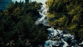 Het meeslepen van schuimend water van de rotsachtige waterval in het bos stock footage
