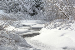 Het meest coolnest de winterstroom Royalty-vrije Stock Afbeeldingen