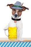 Het meest oktoberfest hond Royalty-vrije Stock Afbeelding