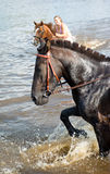 Het meisje baadt paard in een rivier. Royalty-vrije Stock Afbeeldingen