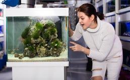 Het meisje bekijkt gestreepte en kleurrijke vissen royalty-vrije stock afbeelding