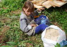 Het meisje bij de zaagmolen verzamelt zaagsel stock fotografie