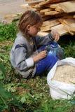 Het meisje bij de zaagmolen verzamelt zaagsel stock afbeelding