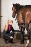 Het meisje borstelt haar poney Royalty-vrije Stock Foto's