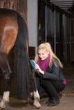 Het meisje borstelt haar poney Royalty-vrije Stock Foto