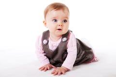 Het Meisje dat van de baby op de Vloer kruipt royalty-vrije stock foto's