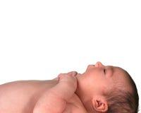 Het Meisje dat van de Baby van de zuigeling omhoog kijkt stock afbeeldingen