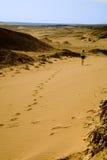 Het meisje dat in woestijn weggaat royalty-vrije stock fotografie