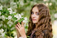 Het meisje in de appelboomgaard Stock Foto