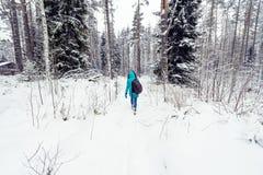 Het meisje in de blauwe laag werpt sneeuw in de koude stemming van de de winter bos Vrolijke winter in vrouwen Stock Foto