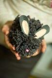 Het meisje in de handen die gebreide egel houden Stock Foto