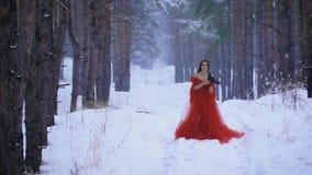 Het meisje in de rode kleding kust haar raaf in de rekening en het glimlachen stock videobeelden