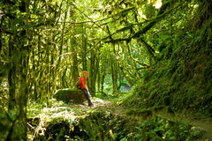 Het meisje in de wildernis stock afbeeldingen