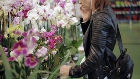 Het meisje in de winkel die zich bij de teller met ingemaakte bloemen bevinden, die op de telefoon spreken en kiest een bloem stock video
