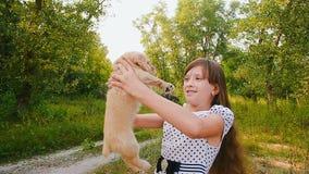 Het meisje draait een puppy op handen stock footage