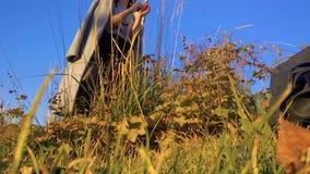Het meisje in een laag in het park onderzoekt droog wild gras in de herfst stock video