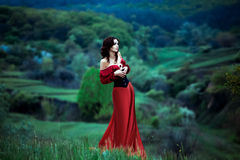 Het meisje in een mooie uitstekende kleding Royalty-vrije Stock Afbeeldingen