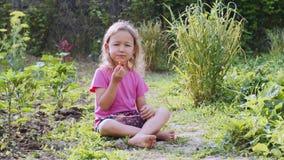 Het meisje eet aardbei en bekijkt camerazitting op het gras stock videobeelden