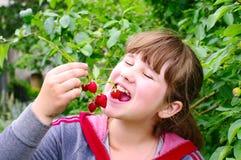 Het meisje eet aardbeien Stock Afbeeldingen