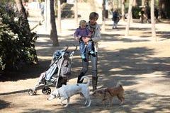 Het meisje en de moeder het letten op van de baby honden in een park stock afbeelding