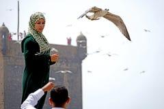 Het meisje en de zeemeeuwen van Essaouira Stock Foto