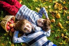 Het meisje en twee jongens leggen op het gras en eten appelen Stock Foto's