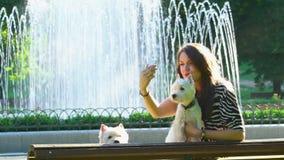 Het meisje en twee leuke honden stellen voor selfie dichtbij parkfontein Beste vrienden samen stock video