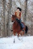 Het meisje gaat horseback op het sneeuwpark Stock Foto's