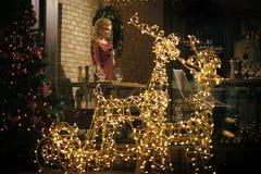 Het meisje geniet partij van voedsel, dranken in restaurant royalty-vrije stock foto