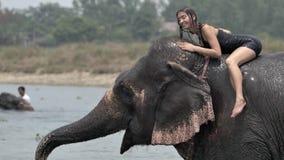 Het meisje heeft een douche op de olifant stock video