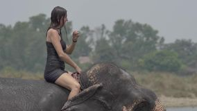 Het meisje heeft een douche op de olifant stock videobeelden