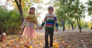 Het meisje houdt de hond door leiband en loopt met kerel op gele bladeren in backlight bij de herfstpark, eerste liefde stock video