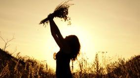 Het meisje houdt een boeket van wildflowers bij zonsondergang in openlucht, snuift het en heft omhoog het op Silhouet Sluit omhoo stock footage