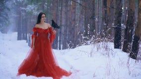Het meisje houdt een raaf op zijn wapen in het midden van het de winterbos stock video