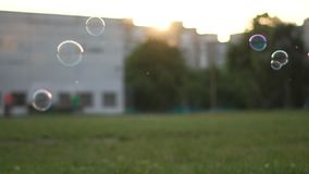 Het meisje houdt een stok, blaast zeepbels in de stralen van de zon, langzame motie stock footage