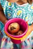 Het meisje houdt een stuk speelgoed emmer met nieuwe aardappels Stock Foto's