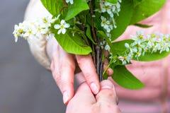 Het meisje keurt witte die bloemen goed door een mens worden voorgesteld stock foto's