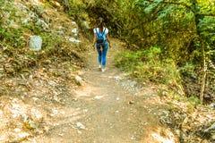 Het meisje loopt door het bos in de Zeven Lentespark in Rhodos royalty-vrije stock afbeeldingen