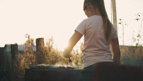Het meisje maakt barbecue op de grill bij groen gazon stock video