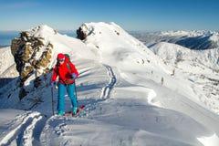 Het meisje maakt skialpinisme naar de bergpas in een aardig spoor met robbevel alleen royalty-vrije stock foto's