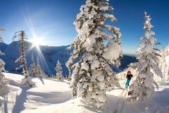 Het meisje maakt skialpinisme naar de bergpas in een aardig spoor met robbevel alleen stock fotografie