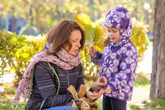 Het meisje met bladeren met haar moeder gelooft verzamelde eikels in het park stock foto's