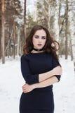 Het meisje met de make-up in de winterportret Royalty-vrije Stock Foto