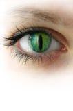 Het meisje met de ogen van de kat Stock Afbeelding