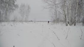 Het meisje met een mand is op een sneeuwsleep stock videobeelden
