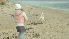 Het meisje met krullend haar in warme kleren, loopt, speelt met een bruine hond op het strand, voedt haar, de hondvangsten een tr stock videobeelden