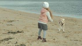 Het meisje met krullend haar in warme kleren, loopt, speelt met een bruine hond op het strand, voedt haar, de hondvangsten een tr stock video