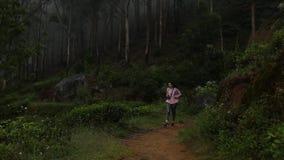 Het meisje met rugzak loopt in het hout stock videobeelden