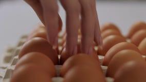 Het meisje neemt een kippenei van het dienblad stock footage